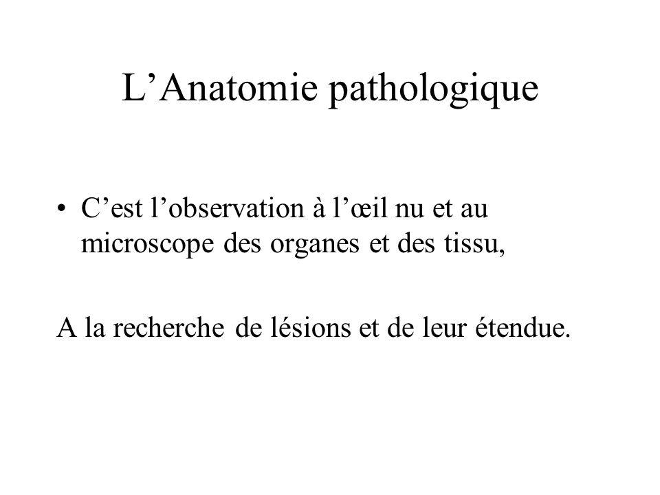 LAnatomie pathologique Cest lobservation à lœil nu et au microscope des organes et des tissu, A la recherche de lésions et de leur étendue.