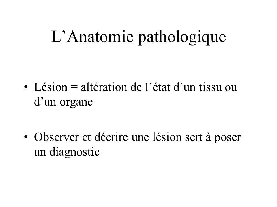 LAnatomie pathologique Lésion = altération de létat dun tissu ou dun organe Observer et décrire une lésion sert à poser un diagnostic