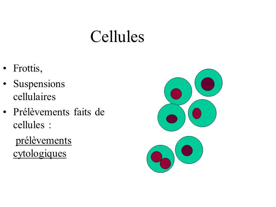 Cellules Frottis, Suspensions cellulaires Prélèvements faits de cellules : prélèvements cytologiques