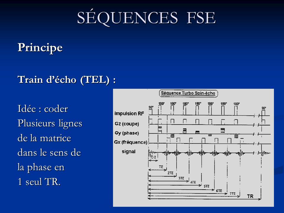 SÉQUENCES FSE SÉQUENCES FSEPrincipe Train décho (TEL) : Idée : coder Plusieurs lignes de la matrice dans le sens de la phase en 1 seul TR.