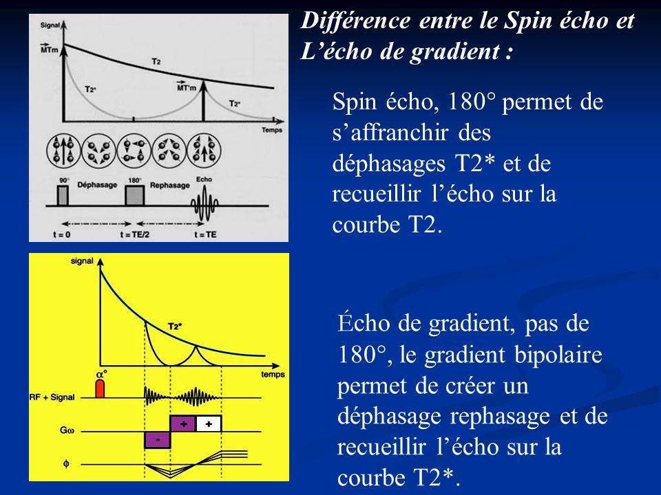 Spin écho, 180° permet de saffranchir des déphasages T2* et de recueillir lécho sur la courbe T2. É cho de gradient, pas de 180°, le gradient bipolair