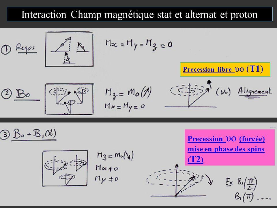 Interaction Champ magnétique stat et alternat et proton Precession libre υo (T1) Precession υo (forcée) mise en phase des spins ( T2 )