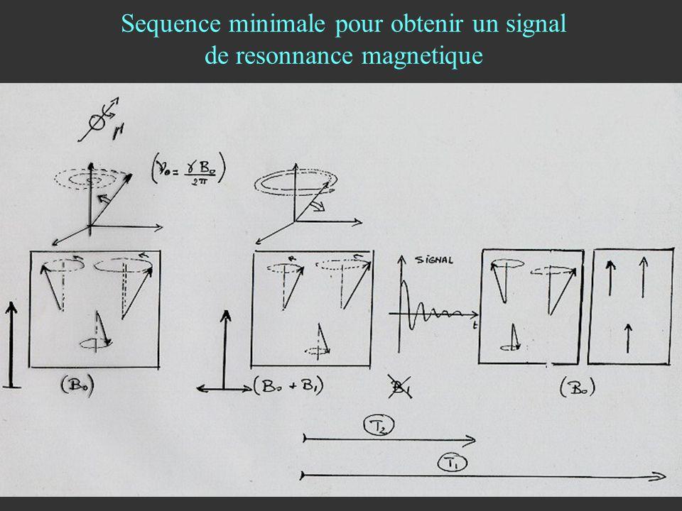 Sequence minimale pour obtenir un signal de resonnance magnetique