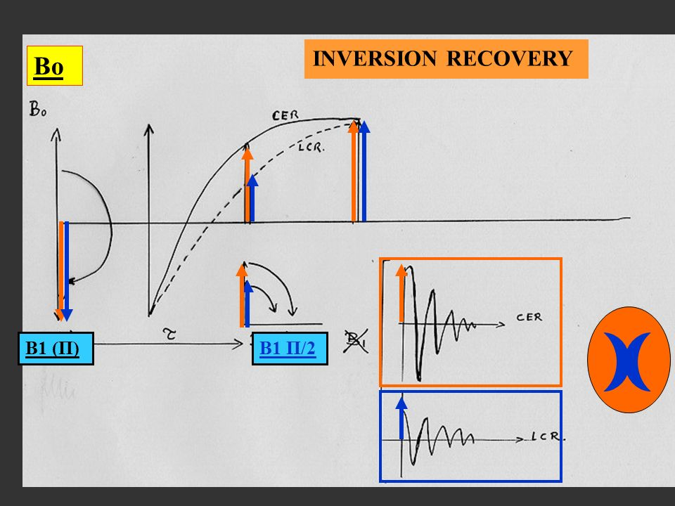 Bo B1 (Π)B1 Π/2 INVERSION RECOVERY
