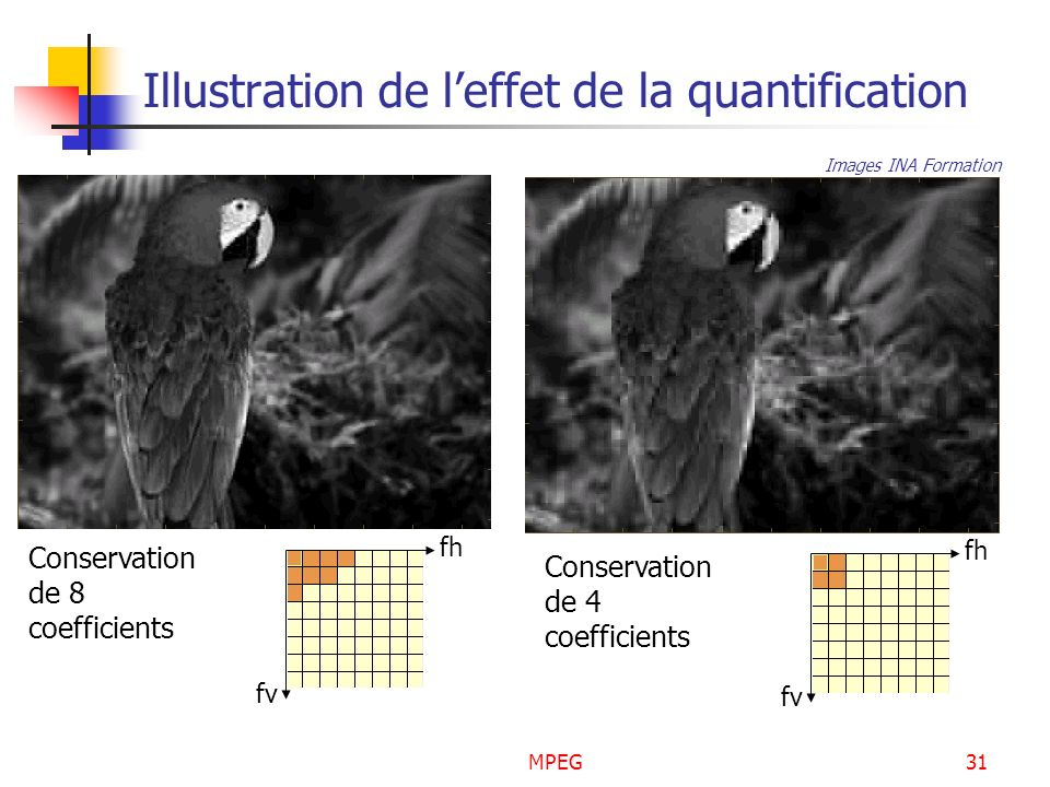 MPEG31 Illustration de leffet de la quantification fv fh Conservation de 8 coefficients fv fh Conservation de 4 coefficients Images INA Formation