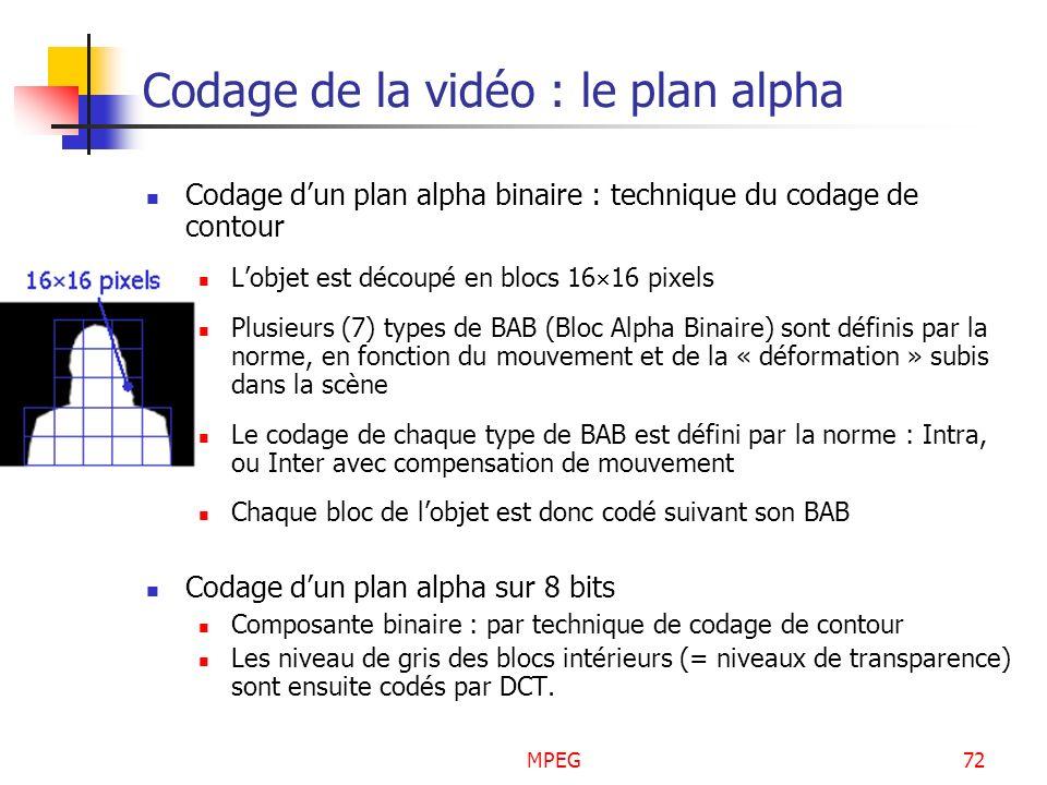 MPEG72 Codage de la vidéo : le plan alpha Codage dun plan alpha binaire : technique du codage de contour Lobjet est découpé en blocs 16 16 pixels Plus
