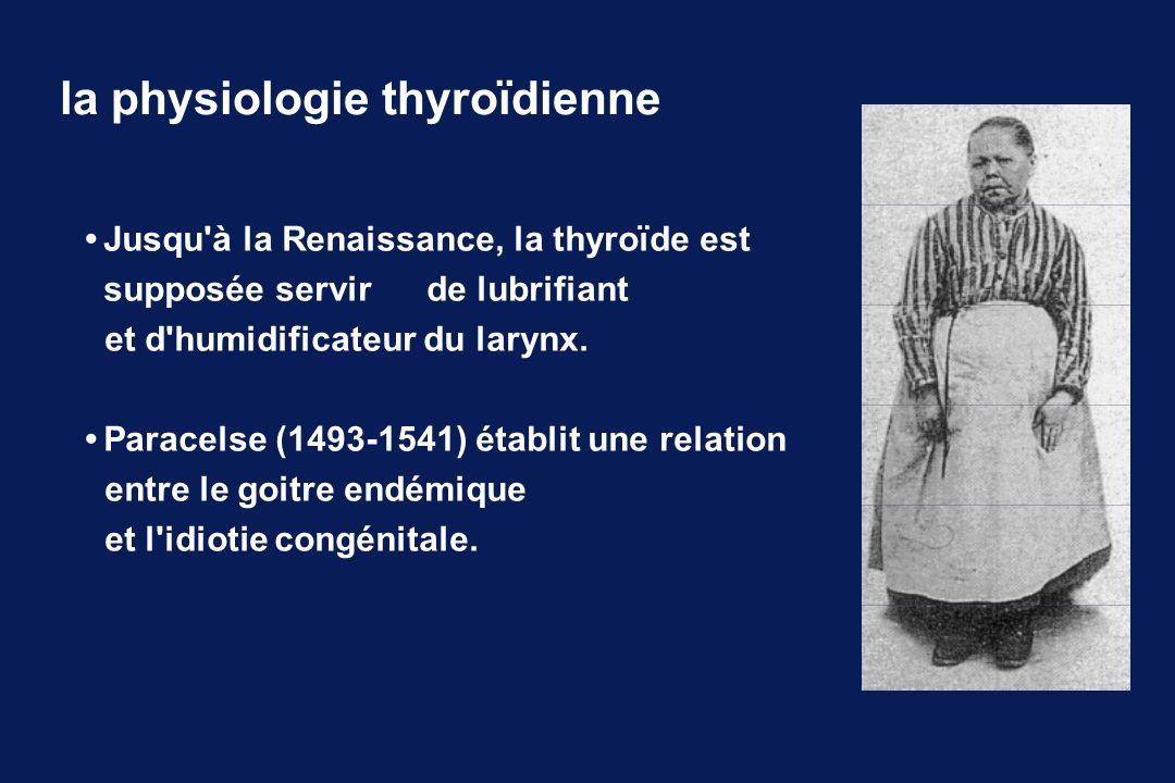 Jusqu'à la Renaissance, la thyroïde est supposée servir de lubrifiant et d'humidificateur du larynx. Paracelse (1493-1541) établit une relation entre