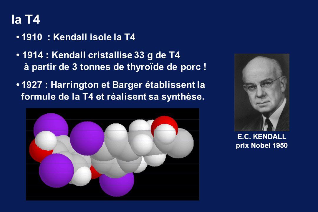 1910 : Kendall isole la T4 1914 : Kendall cristallise 33 g de T4 à partir de 3 tonnes de thyroïde de porc ! 1927 : Harrington et Barger établissent la