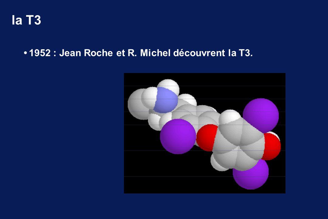 la T3 1952 : Jean Roche et R. Michel découvrent la T3.