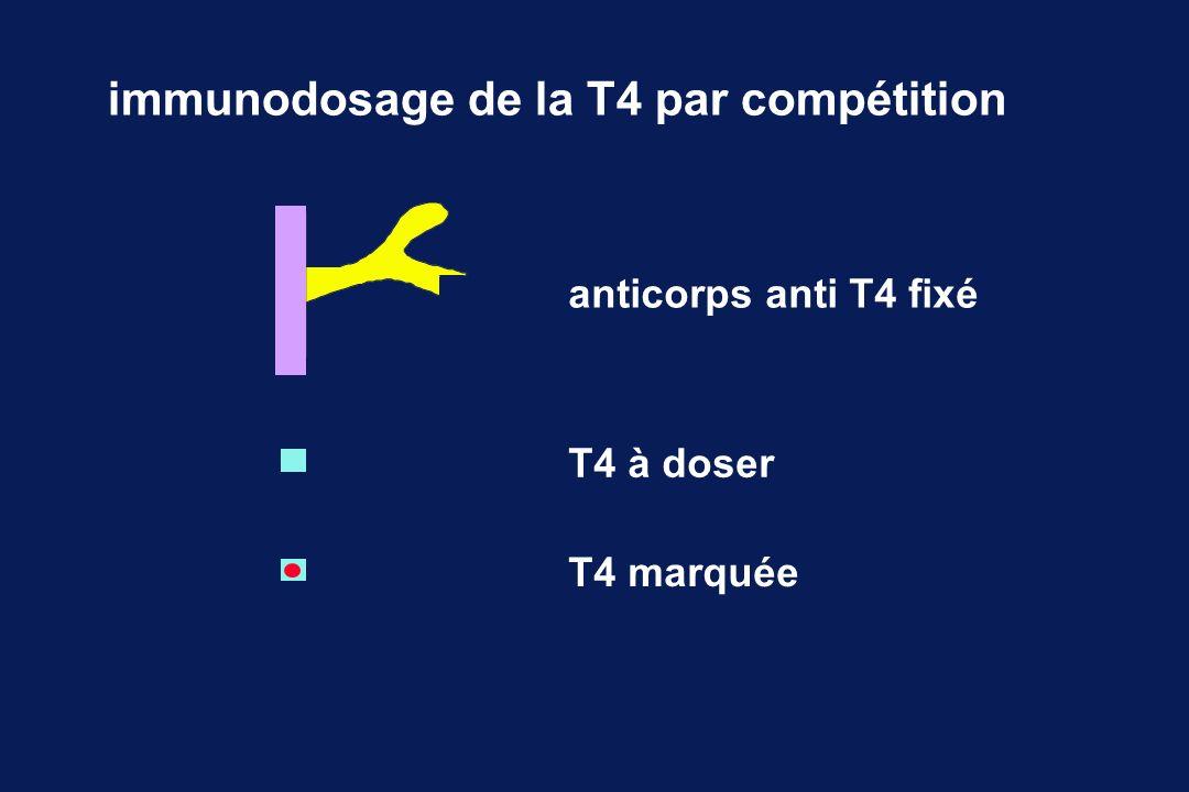RIA-LIA : distribution anticorps anti T4 fixé T4 à doser T4 marquée immunodosage de la T4 par compétition