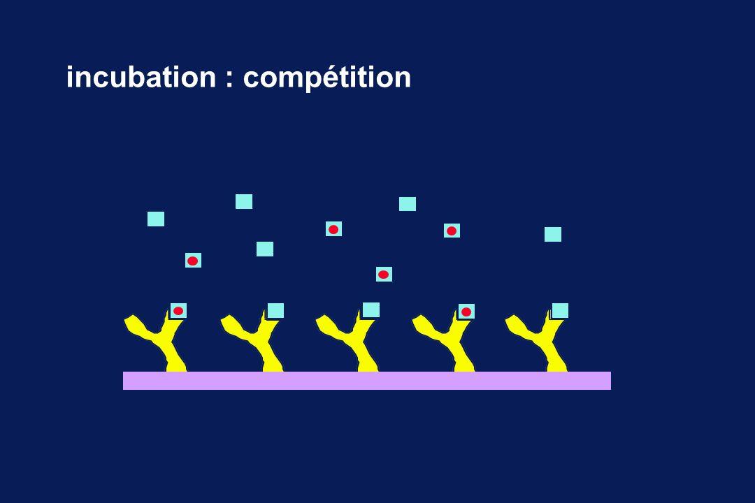 incubation : compétition