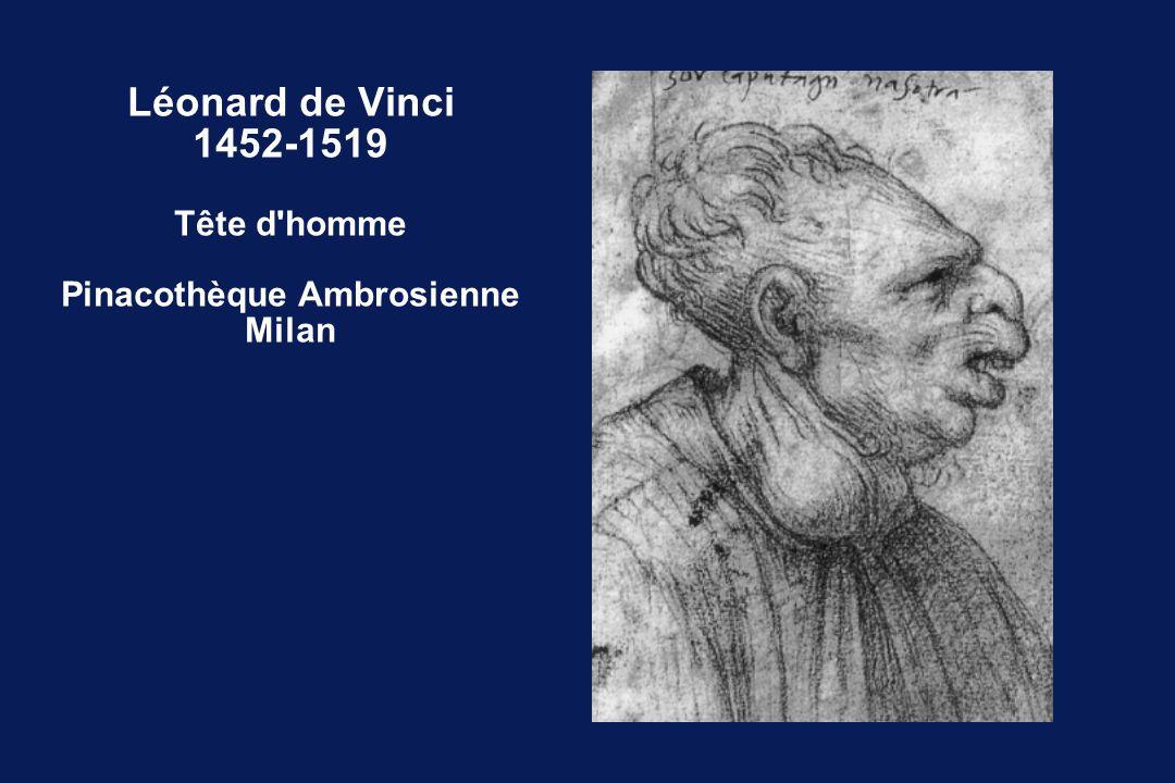 Léonard de Vinci 1452-1519 Tête d'homme Pinacothèque Ambrosienne Milan