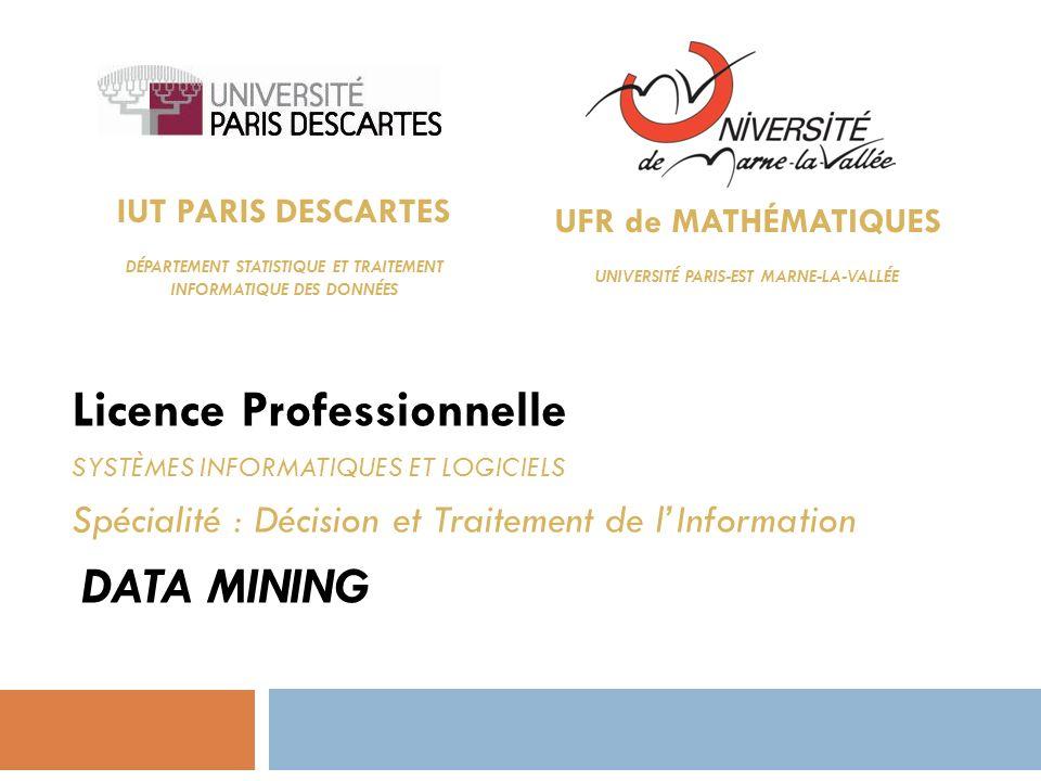 IUT PARIS DESCARTES DÉPARTEMENT STATISTIQUE ET TRAITEMENT INFORMATIQUE DES DONNÉES Licence Professionnelle SYSTÈMES INFORMATIQUES ET LOGICIELS Spécial