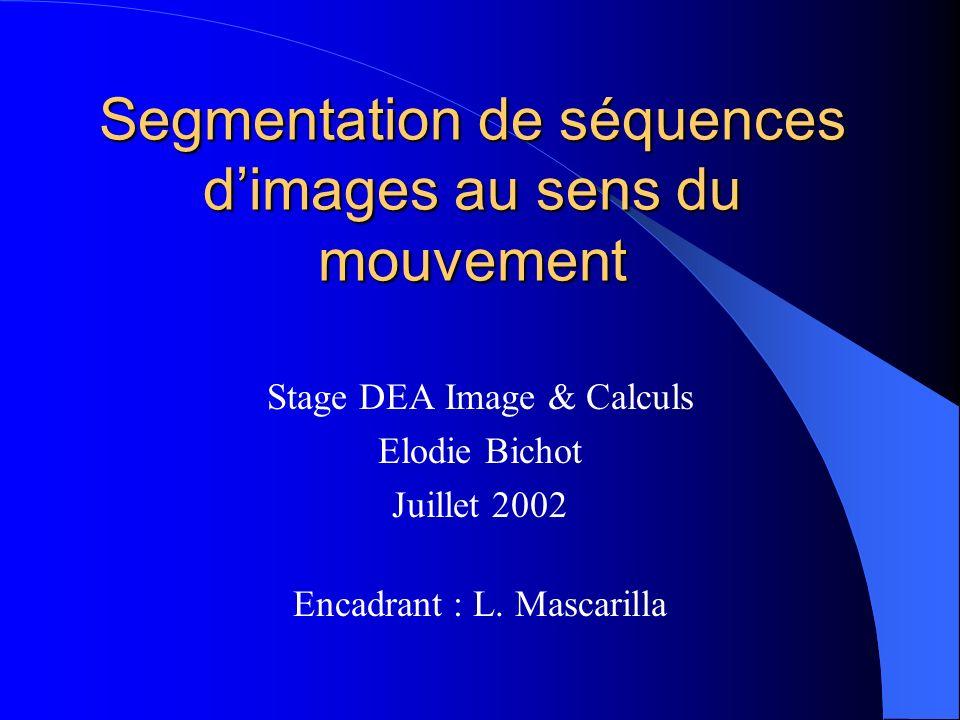 Segmentation de séquences dimages au sens du mouvement Stage DEA Image & Calculs Elodie Bichot Juillet 2002 Encadrant : L. Mascarilla
