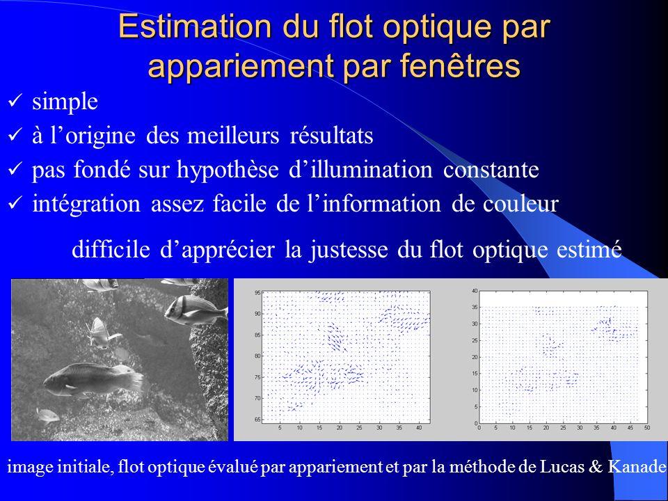 Estimation du flot optique par appariement par fenêtres simple à lorigine des meilleurs résultats pas fondé sur hypothèse dillumination constante inté