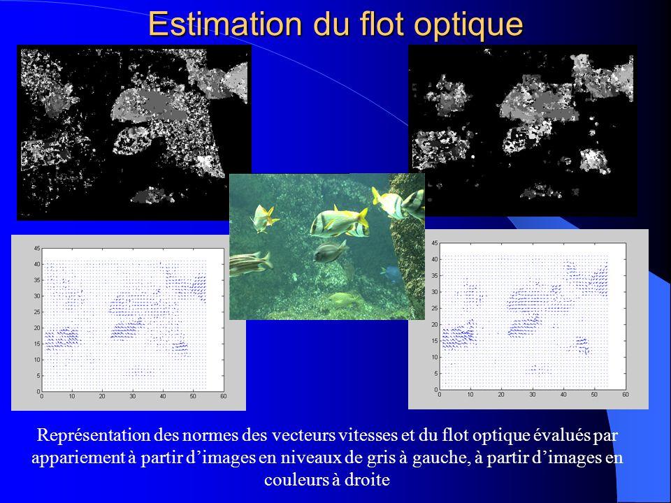 Estimation du flot optique Représentation des normes des vecteurs vitesses et du flot optique évalués par appariement à partir dimages en niveaux de g