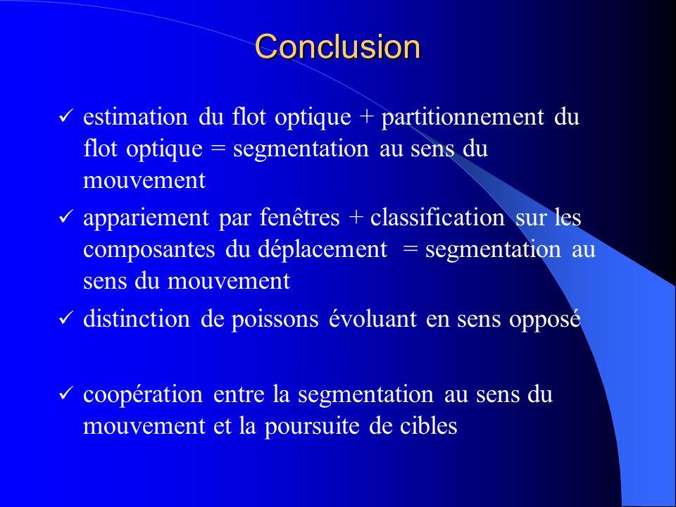 Conclusion estimation du flot optique + partitionnement du flot optique = segmentation au sens du mouvement appariement par fenêtres + classification