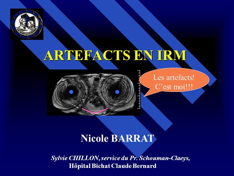 ARTEFACTS EN IRM Sylvie CHILLON, service du Pr. Schouman-Claeys, Hôpital Bichat Claude Bernard Les artefacts! Cest moi!!! Nicole BARRAT