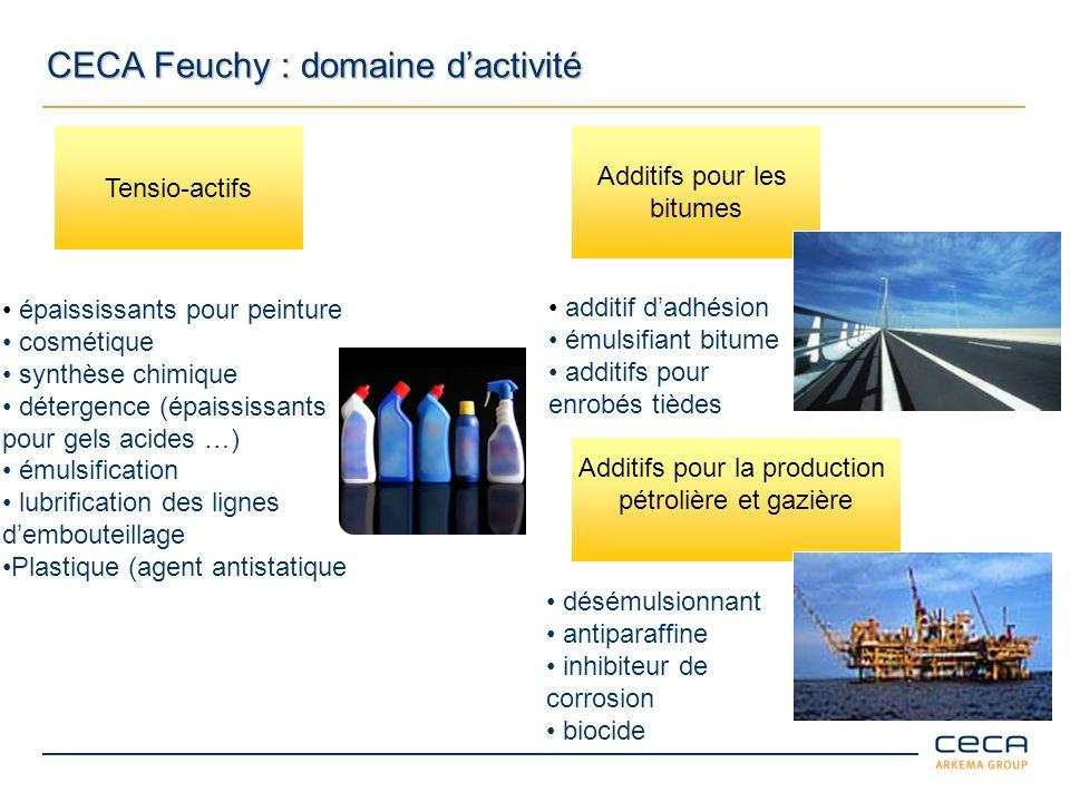 Usine de Feuchy CECA Feuchy : points clés 2008 Activité : 36500 tonnes Effectifs au 31 décembre 2008 : 135 personnes (11 ingénieurs et cadres, 43 techniciens et agents de maîtrise, 81 agents) Budget de fonctionnement : 13,1 M hors T.P.
