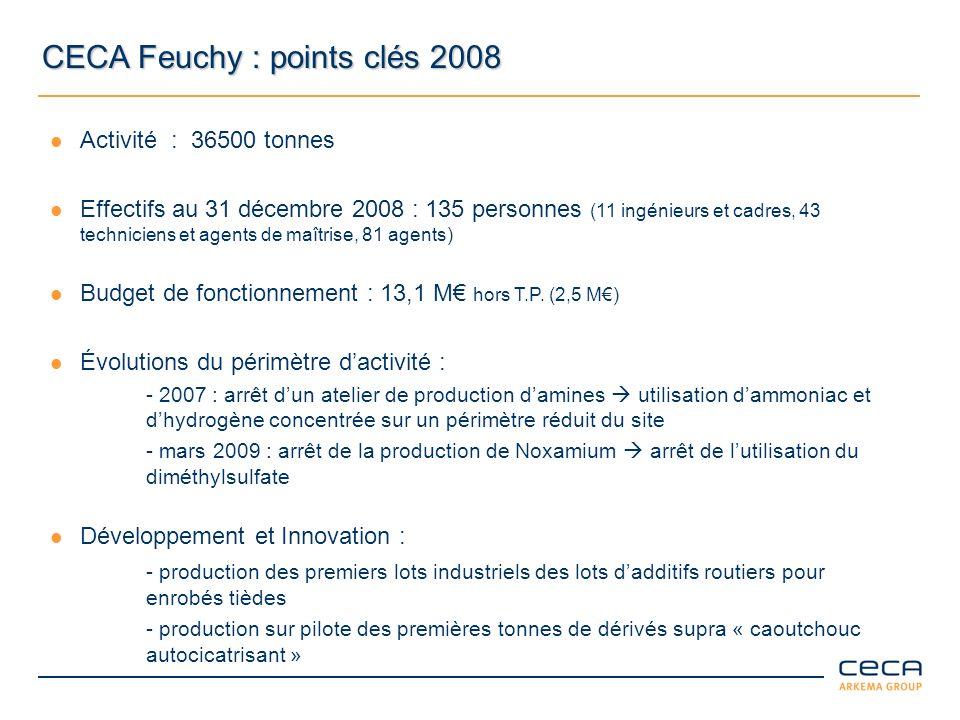 Sécurité – Environnement – Qualité 2008 Accidents du travail CECA et Entreprises Extérieures Sécurité - une démarche damélioration continue - un Système dÉvaluation International (SIES/ISRS) un objectif dévolution du niveau 7 vers le niveau 8 en 2009 Environnement - Signature de lEngagement de progrès UIC en mars Qualité - Renouvellement de la certification ISO 9001 en 2008 - Amélioration continue des résultats - Typologie des accidents en évolution depuis 5 ans avec une baisse des accidents liés à notre métier de chimiste (25%)