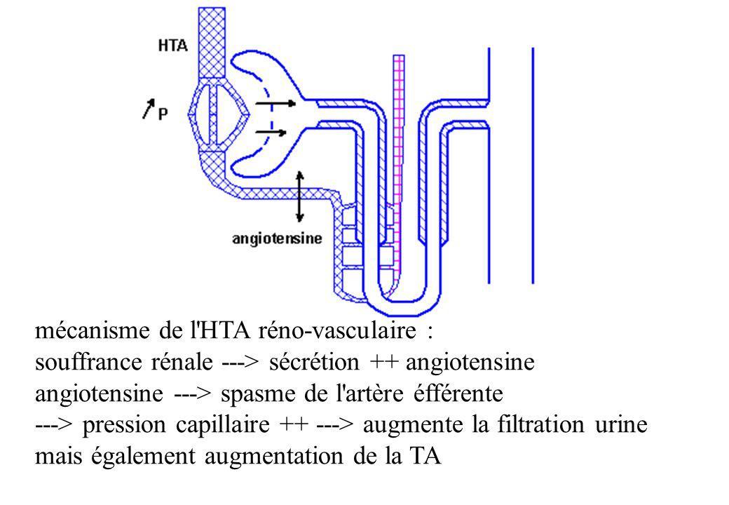 mécanisme de l'HTA réno-vasculaire : souffrance rénale ---> sécrétion ++ angiotensine angiotensine ---> spasme de l'artère éfférente ---> pression cap