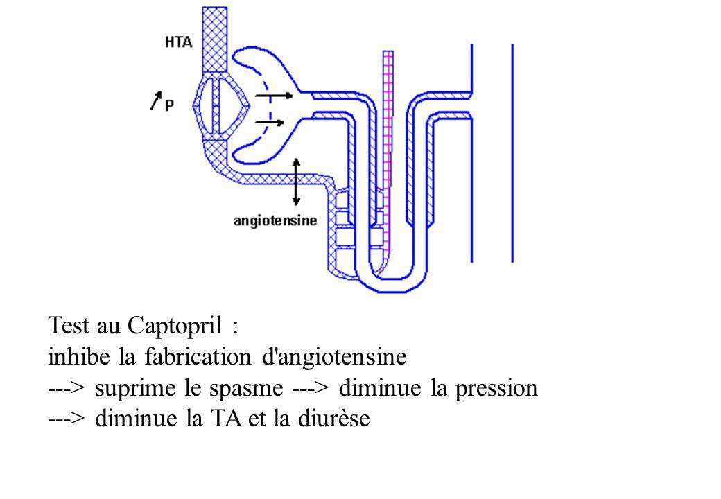 Test au Captopril : inhibe la fabrication d'angiotensine ---> suprime le spasme ---> diminue la pression ---> diminue la TA et la diurèse