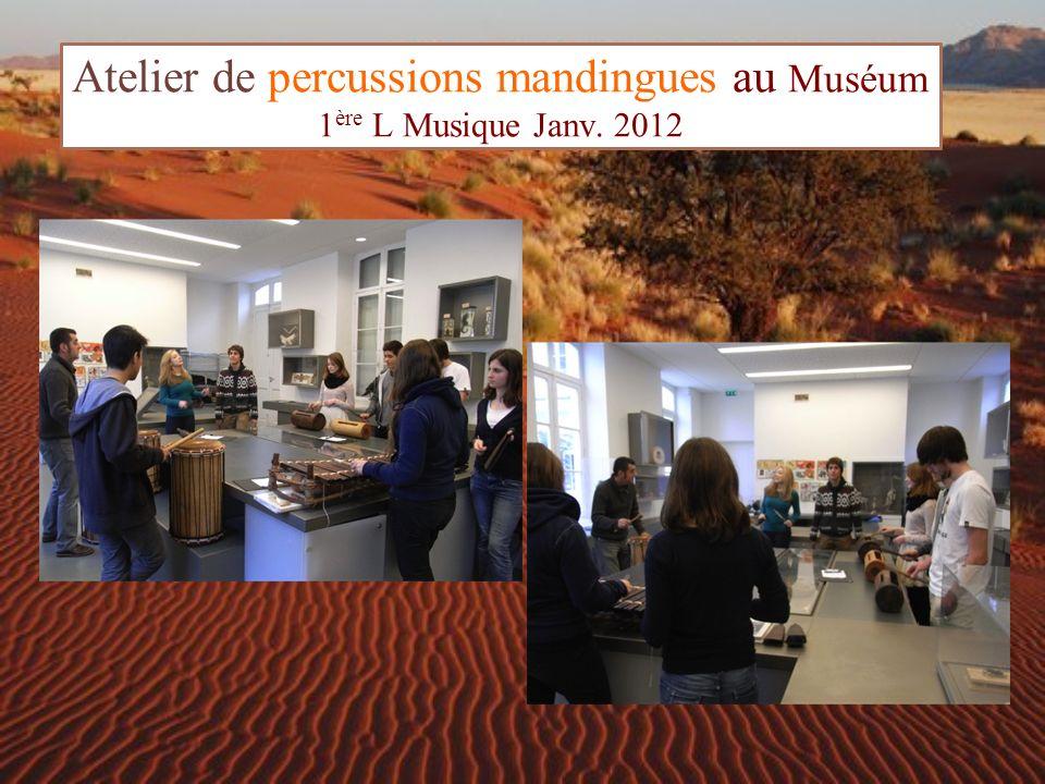 Atelier de percussions mandingues au Muséum 1 ère L Musique Janv. 2012