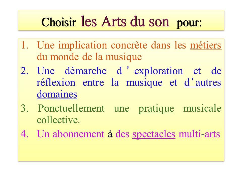 1.Une implication concrète dans les métiers du monde de la musique 2.Une démarche dexploration et de réflexion entre la musique et dautres domaines 3.