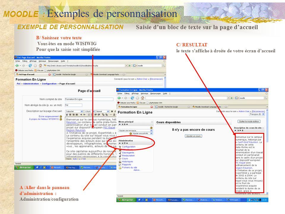 B/ Saisissez votre texte Vous êtes en mode WISIWIG Pour que la saisie soit simplifiée Saisie dun bloc de texte sur la page daccueil EXEMPLE DE PERSONN