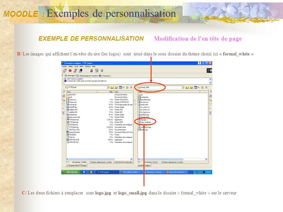 C/ Les deux fichiers à remplacer sont logo.jpg et logo_small.jpg dans le dossier « formal_white » sur le serveur Modification de len tête de page EXEM