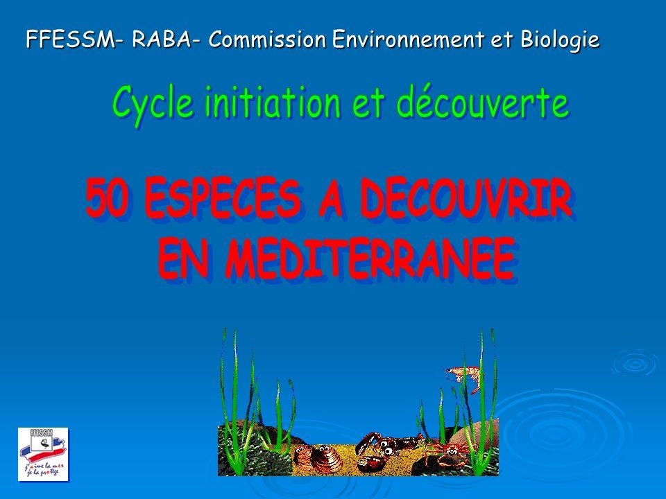 FFESSM- RABA- Commission Environnement et Biologie