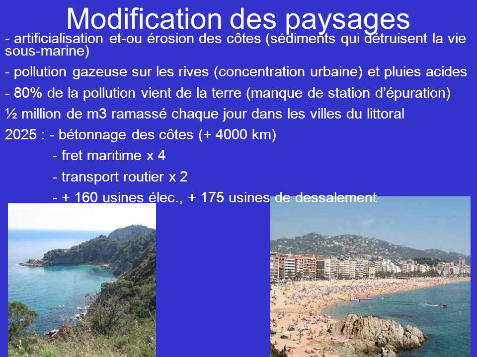 Modification des paysages - artificialisation et-ou érosion des côtes (sédiments qui détruisent la vie sous-marine) - pollution gazeuse sur les rives