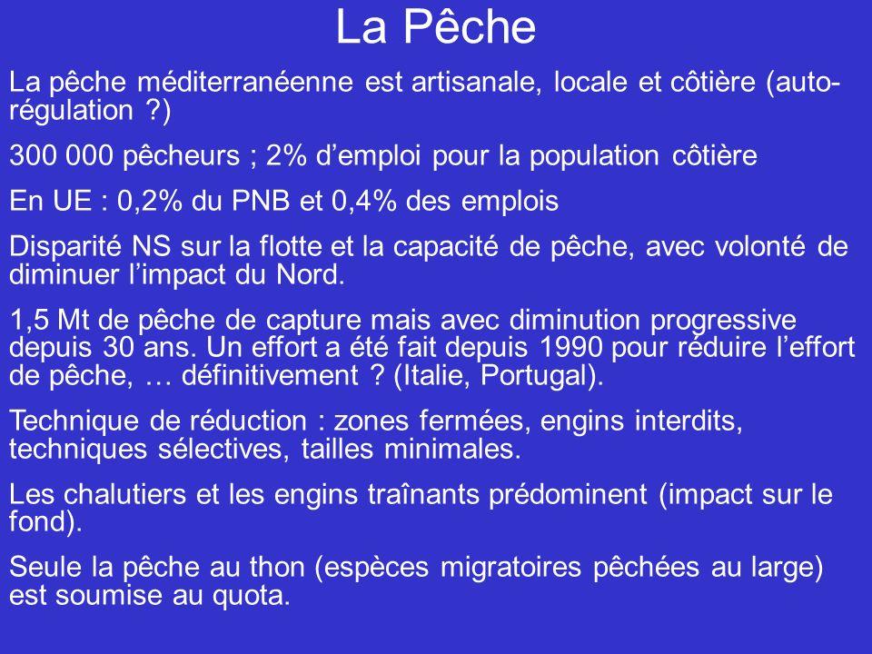 La Pêche La pêche méditerranéenne est artisanale, locale et côtière (auto- régulation ) 300 000 pêcheurs ; 2% demploi pour la population côtière En UE : 0,2% du PNB et 0,4% des emplois Disparité NS sur la flotte et la capacité de pêche, avec volonté de diminuer limpact du Nord.