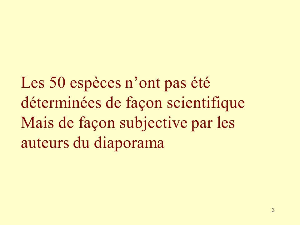 2 Les 50 espèces nont pas été déterminées de façon scientifique Mais de façon subjective par les auteurs du diaporama