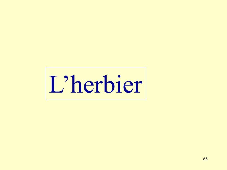 68 Lherbier