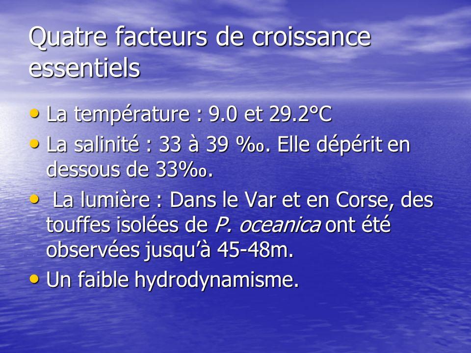 Quatre facteurs de croissance essentiels La température : 9.0 et 29.2°C La température : 9.0 et 29.2°C La salinité : 33 à 39. Elle dépérit en dessous
