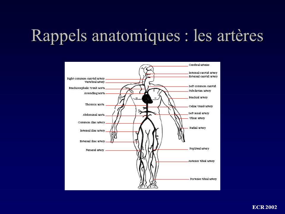 ECR 2002 Dissection aortique : Angio-TDM spiralée Angio-TDM : intérêt dune 2°spirale « tardive »