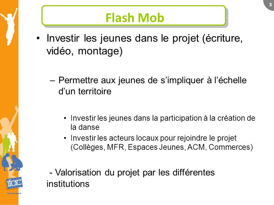 3 Flash Mob Investir les jeunes dans le projet (écriture, vidéo, montage) –Permettre aux jeunes de simpliquer à léchelle dun territoire Investir les j