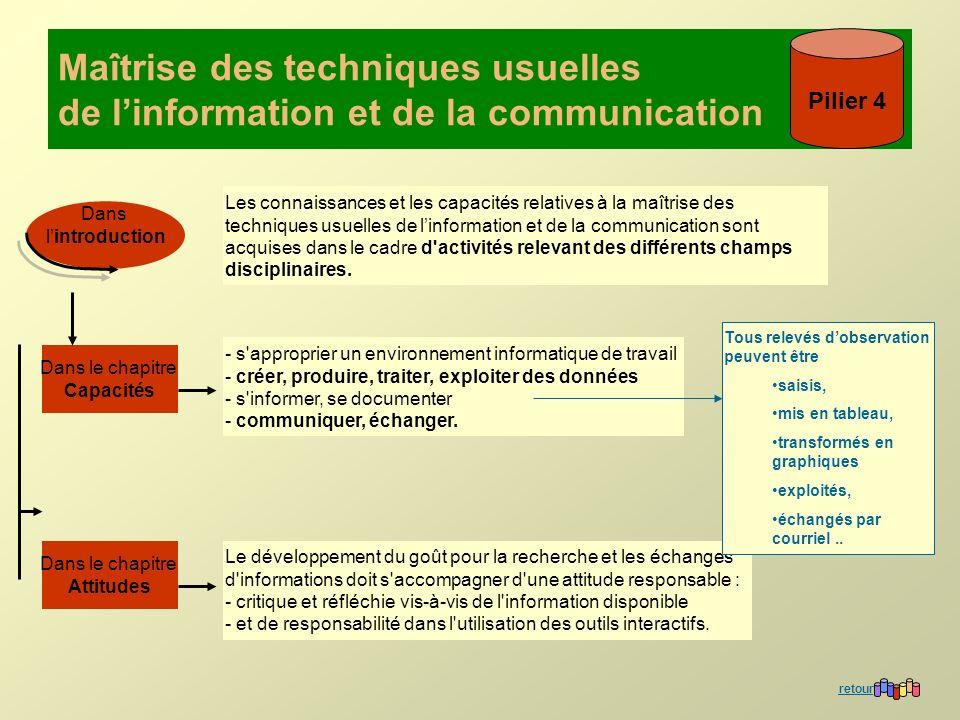 Maîtrise des techniques usuelles de linformation et de la communication Pilier 4 Les connaissances et les capacités relatives à la maîtrise des techni