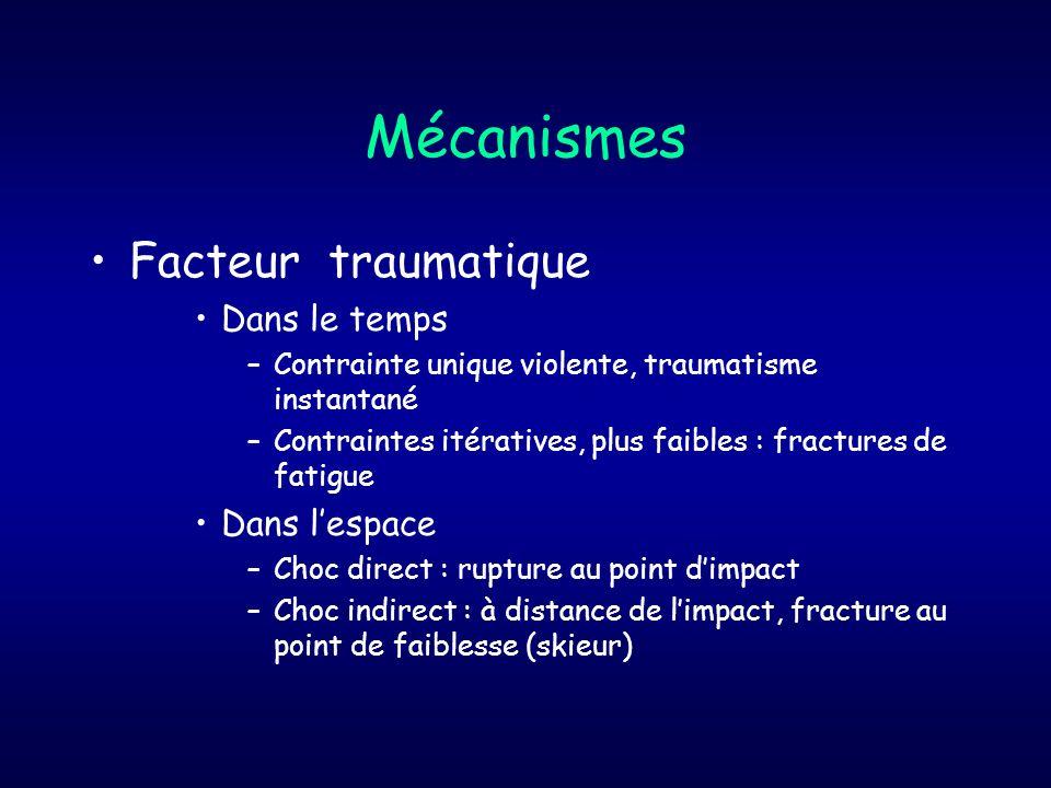 Ostéochondrose Aspect fragmenté caractéristique (TTA) Ex : Maladie dOsgood- Schlatter