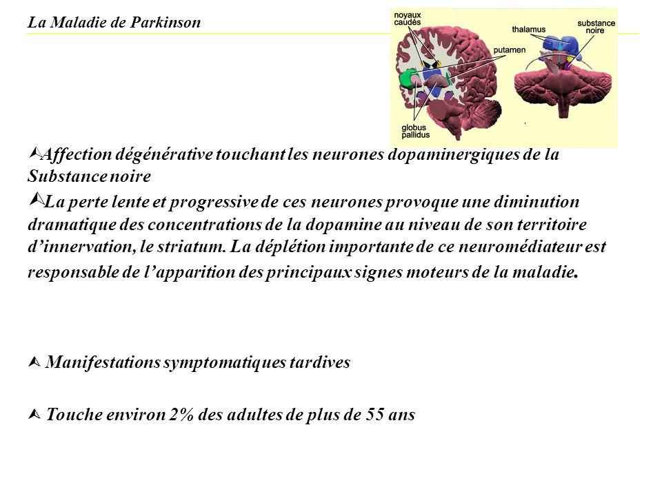 La Maladie de Parkinson Ù Affection dégénérative touchant les neurones dopaminergiques de la Substance noire Ù La perte lente et progressive de ces ne