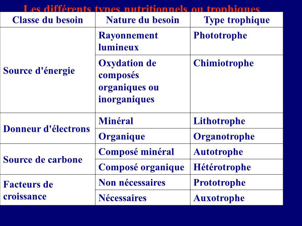 Les différents types nutritionnels ou trophiques Classe du besoinNature du besoinType trophique Source d'énergie Rayonnement lumineux Phototrophe Oxyd