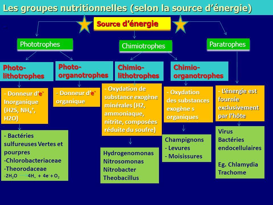 Les groupes nutritionnelles (selon la source dénergie) - Source dénergie Chimiotrophes Phototrophes Paratrophes Chimio-organotrophes Chimio-lithotroph