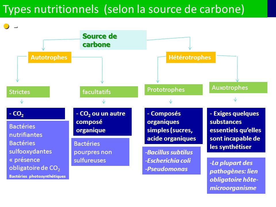 - Types nutritionnels (selon la source de carbone) Source de carbone AutotrophesHétérotrophes Strictesfacultatifs Auxotrophes Prototrophes - CO 2 Bact