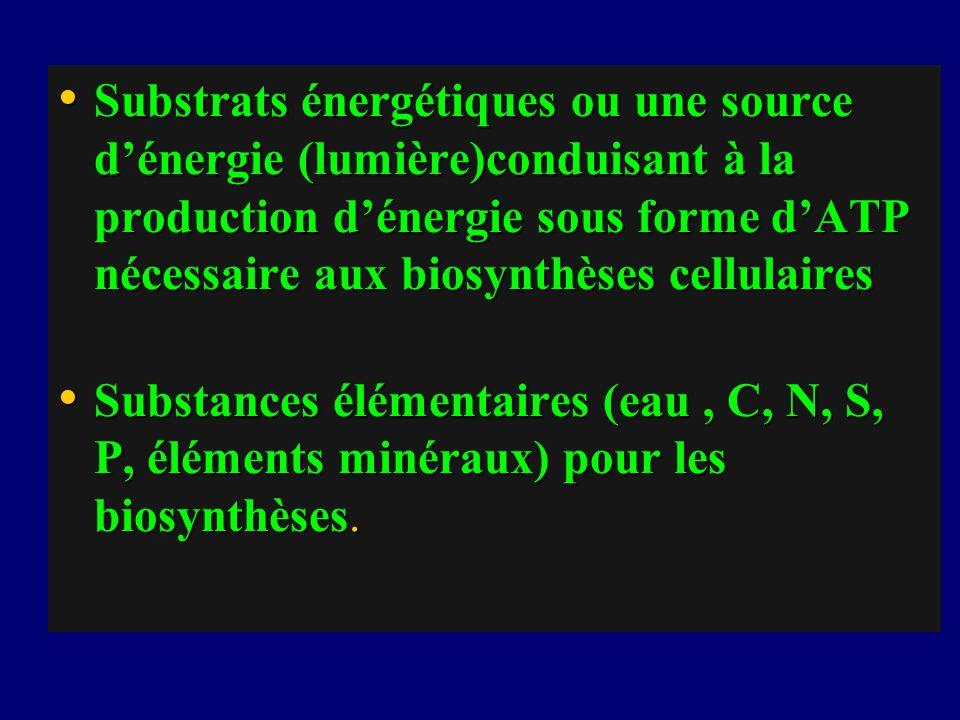 Substrats énergétiques ou une source dénergie (lumière)conduisant à la production dénergie sous forme dATP nécessaire aux biosynthèses cellulaires Sub