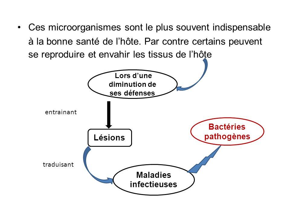Stratégies pour se reproduire chez lhôte Enzymes dinvasion Toxines Avec la Production Molécules dadhésion Facteurs de croissance