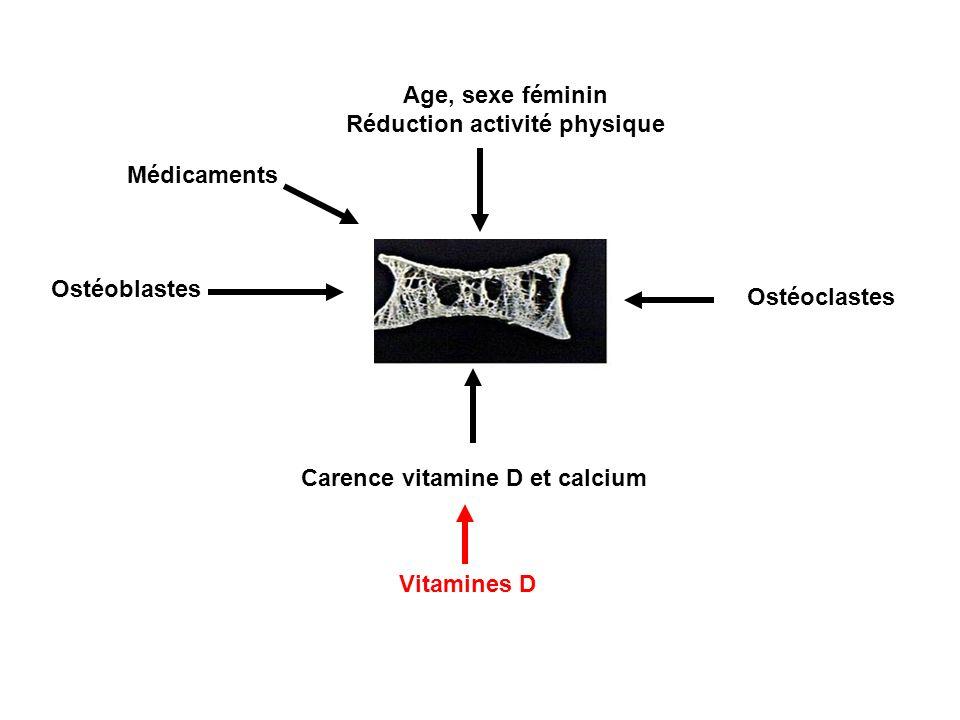 Ostéoblastes Ostéoclastes Carence vitamine D et calcium Age, sexe féminin Réduction activité physique Vitamines D Médicaments