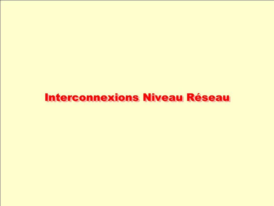 Interconnexions Niveau Réseau