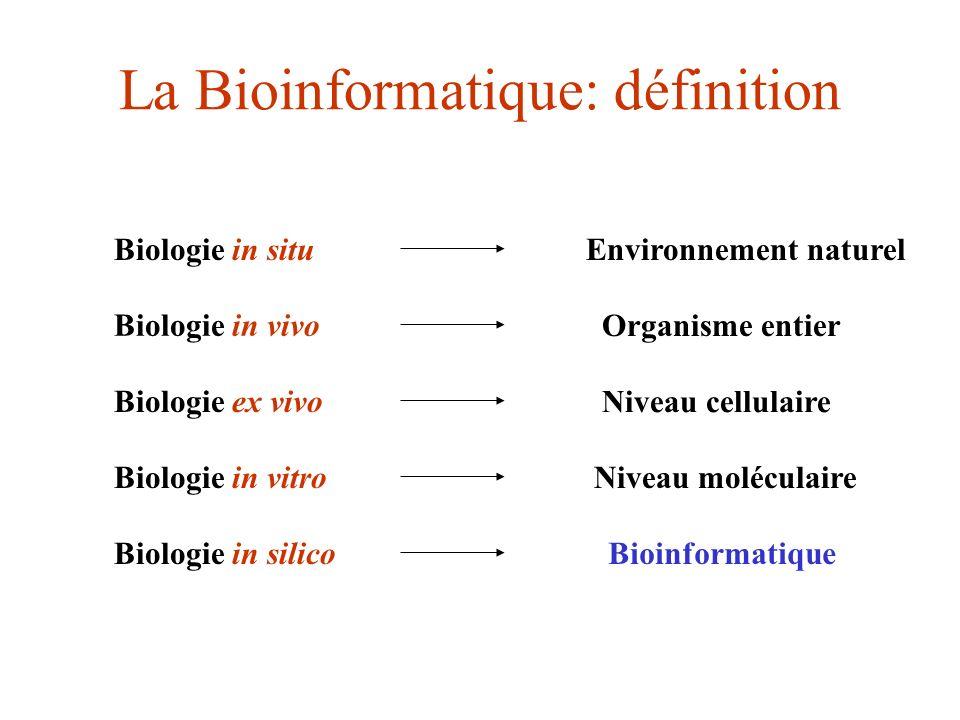La bioinformatique : définition Bioinformatique = biologie théorique Ensemble des concepts et techniques nécessaires pour interpréter: - linformation génétique (manipulation de séquences) - linformation structurale (repliement 3D) C est le décryptage de la bio- information