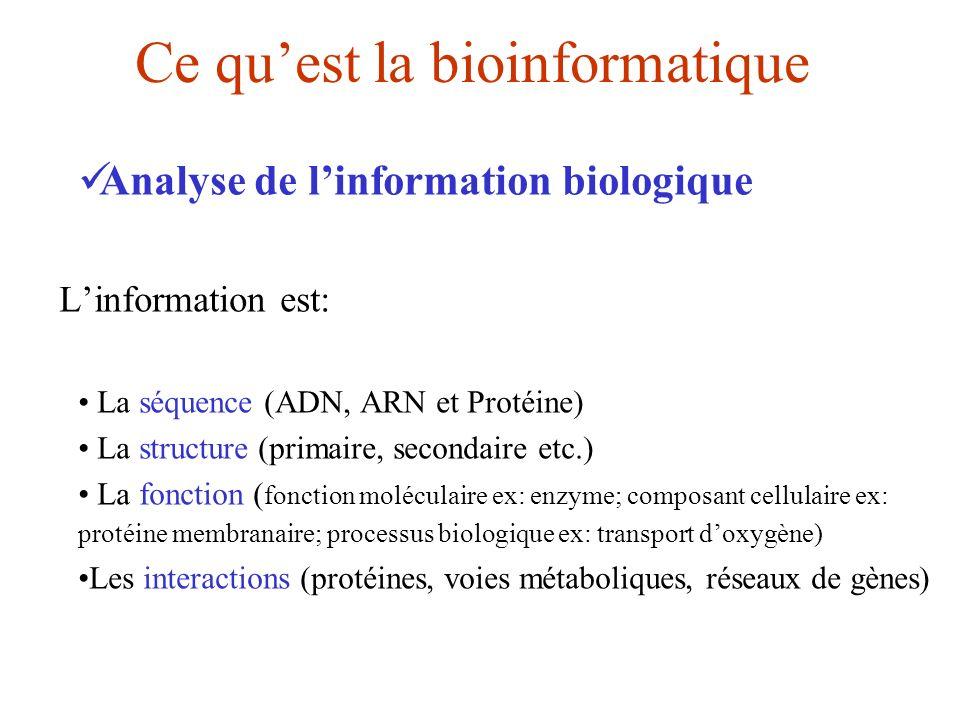 Ce quest la bioinformatique Analyse de linformation biologique Linformation est: La séquence (ADN, ARN et Protéine) La structure (primaire, secondaire